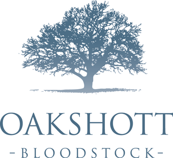 Oakshott Bloodstock | Thoroughbred Racehorse Stud Farm